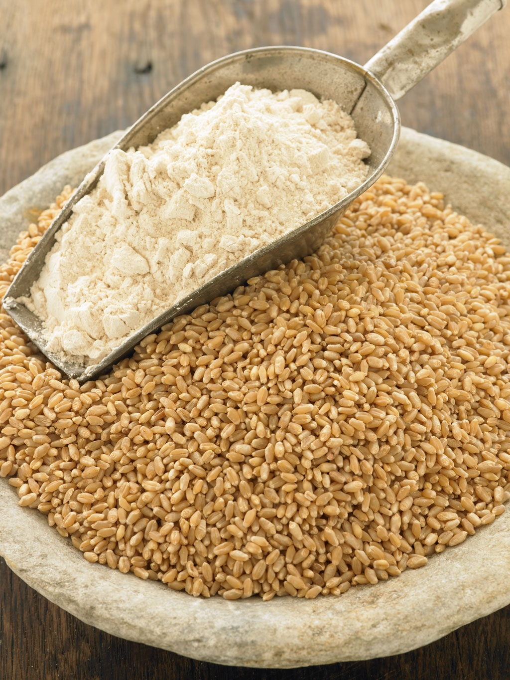 durum wheat flour mayank pulses